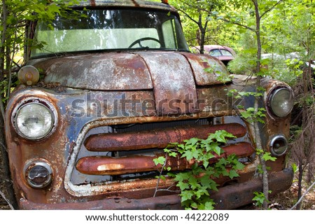 Junk yard vehicles showing old rusted truck  in overgrown weedy area
