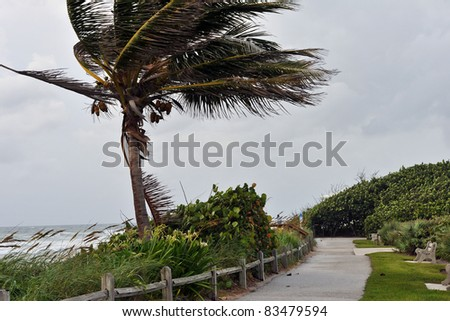 Jupiter Florida Aug 25 Tropical Storm Rain Bands Of