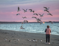 Jurmala, Latvia. Woman feeding birds. sky birds flying. nature birds flying. nature sea