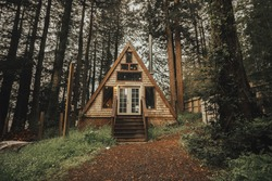 just a cabin in the woods