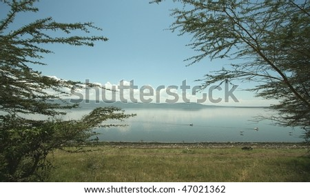 Just after dawn African horizon over Lake Nakuru with trees framing the picture