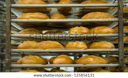 Just baked long bread in bakery department in supermarket