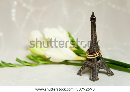 Just married in Paris. Two wedding rings with flowers, bridal veil and miniature Eiffel Tower