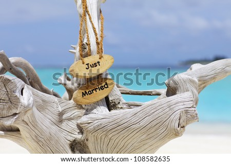 Just married sign on driftwood in front of blue ocean - stock photo