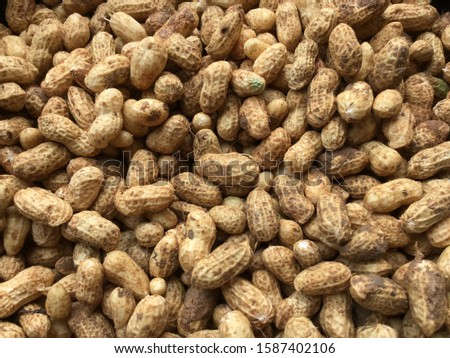 Just picked organic peanuts very tasty and good for health