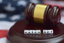 Justice mallet and Hatch act characters with US flag on background