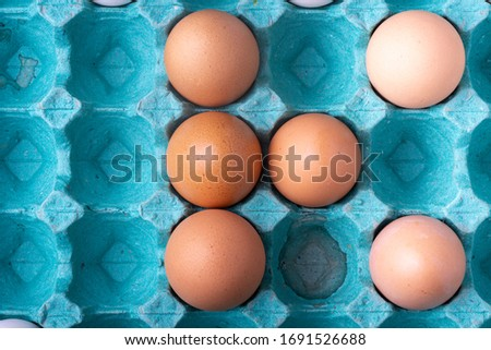 K forming rows of brown shaded chicken eggs in colourful teal egg carton box. Top down evenly lit studio image of food Stock fotó ©