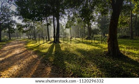 Kabini river  village near kabini, nagarhole national park of Karnataka  Zdjęcia stock ©