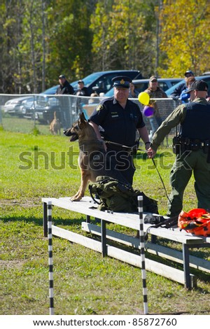 KAGAWONG, ONTARIO, CANADA -OCTOBER 1: Police dog demonstration showing drug sniffing and attack training on October 1, 2011 in Kagawong, on Manitoulin Island, Ontario, Canada.