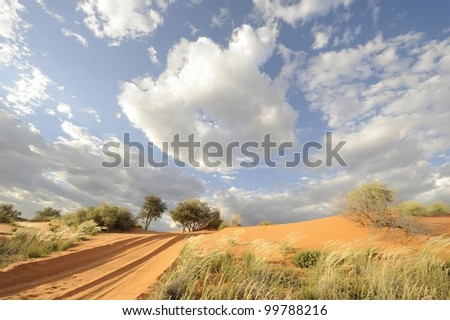 Kalahari dunes, Loch Broom, Askam, northern Cape