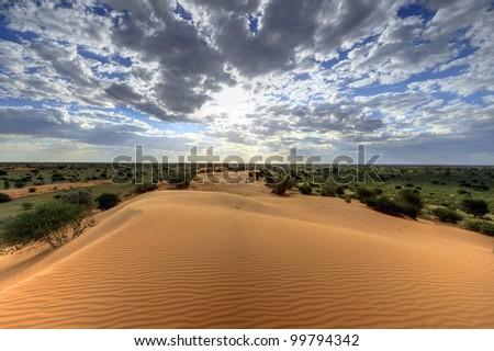 kalahari sand dune, loch broom,askam, northern cape, south africa. hdr exposure stack
