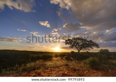 Kalahari sunset. 9 image exposure stack. Loch Broom, Askam, Northern Cape,