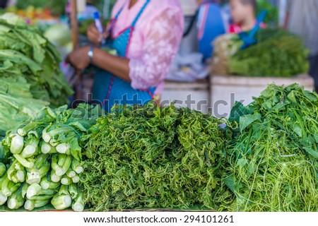 Kale (Brassica alboglabra), vegetable fern (Diplazium esculentum) and Coccinia grandis are raw vegetables for retail sale in Thailand fresh food market