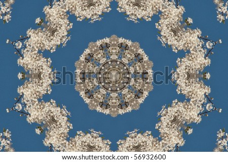 kaleidoscope image of cherry blossoms