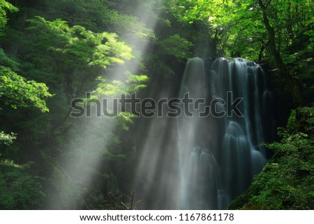 Kameda immobile waterfall in the summer #1167861178