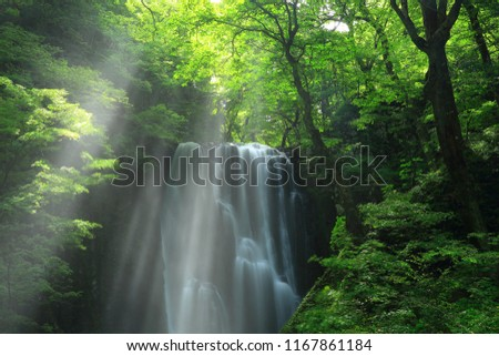 Kameda immobile waterfall in the summer #1167861184