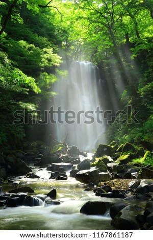 Kameda immobile waterfall in the summer #1167861187