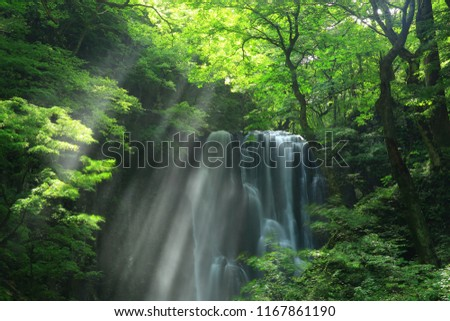 Kameda immobile waterfall in the summer #1167861190