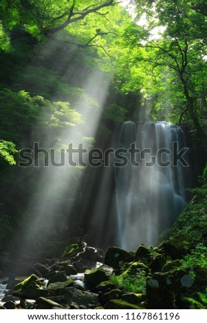 Kameda immobile waterfall in the summer #1167861196