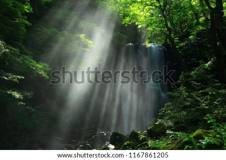 Kameda immobile waterfall in the summer #1167861205