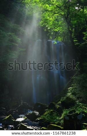 Kameda immobile waterfall in the summer #1167861238