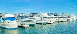 Kammerman's Marina in Atlantic city Golden nugget. Frank S. Farley State Marina, New Jersey