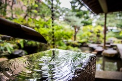 Kanazawa, Japan - 2016 Bonsai zen garden water spring feature at the Nomura samurai house. A historical Japanese landmark located in the Nagamachi District.