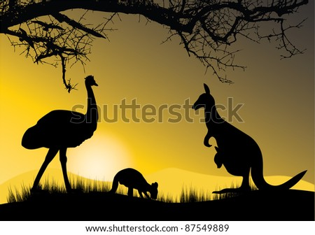 kangaroo and emu in the sunset