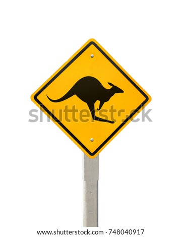 Kangaroo crossing road signs, Road symbol signs and traffic symbols for roadway, Yellow board with reflection and concrete post, isolated on white with clipping path