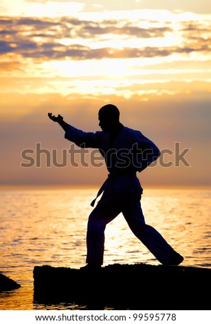 Karate training on sunset at seacost - stock photo
