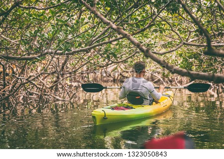 Kayak man kayaking in mangrove nature of Everglades, Florida, USA travel activity. Watersport tourism people lifestyle.