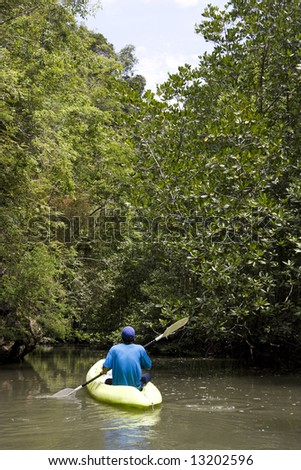 Kayaking through mangrove forest, Krabi Province, Southern Thailand