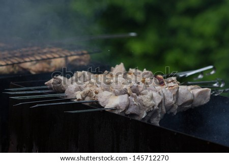 kebab prepares on the fire outdoors