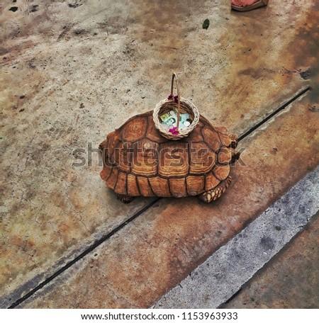 Keep alive turtle #1153963933
