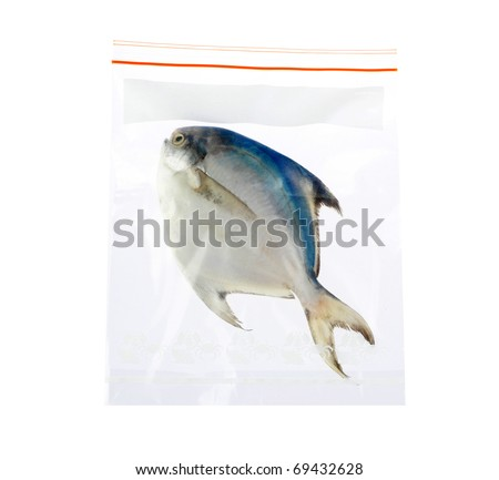 keep your fish or seafood always fresh in the zipper plastic bag