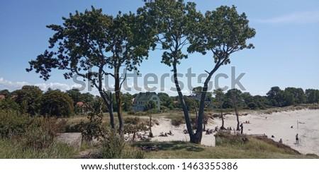 Kenigsberg region Kaliningradskaya oblast sea beach