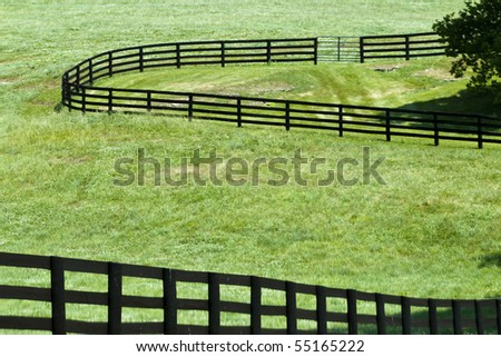Kentucky Horse Farm near Lexington, KY USA