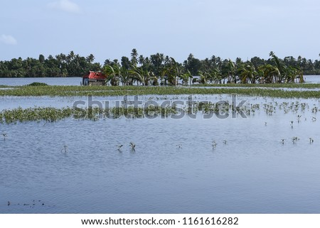 Kerala flood disaster house and places submerged in water in Kuttanad Alleppey India.  #1161616282