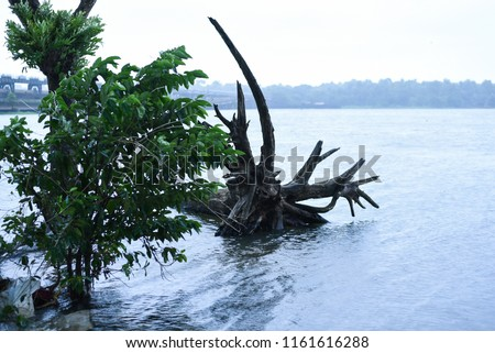 Kerala flood disaster house and places submerged in water in Kuttanad Alleppey India.  #1161616288