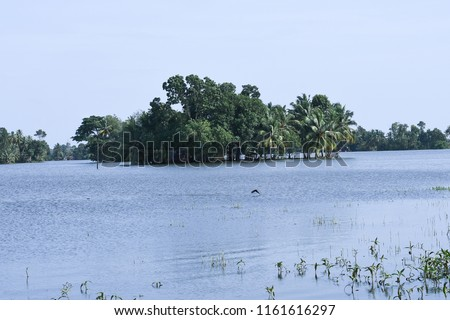 Kerala flood disaster house and places submerged in water in Kuttanad Alleppey India.  #1161616297