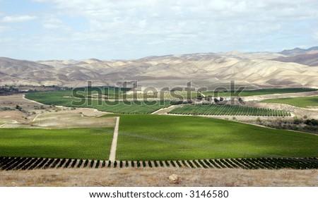 Kern County vista