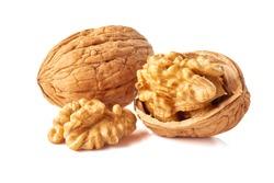 Kernel and whole walnut on white
