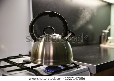 kettle with boiling water. the kettle boils on a gas stove. the kettle whistles on the gas. steam from the kettle through the whistle.