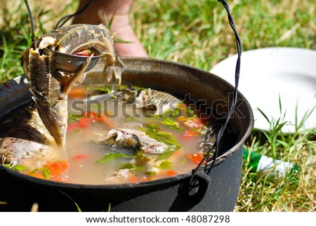 Kettle with fish soup made with ingredients from Danube -fish and water- - stock photo