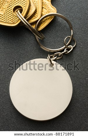 Key ring on the grey background
