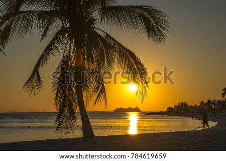 Key West Florida - View from the beach on Cruiseship, ocean and palms at sunset.