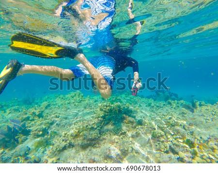 Key West Snorkelling in the Florida Keys Marine Sanctuary #690678013
