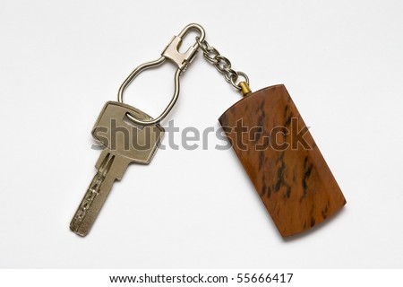 Key with key ring