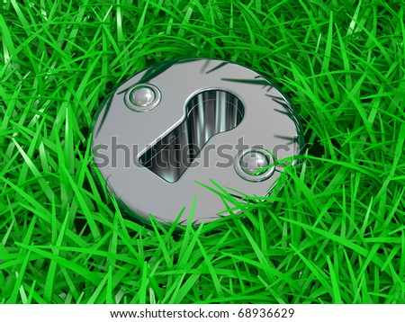 Keyhole in a green grass. The safety concept