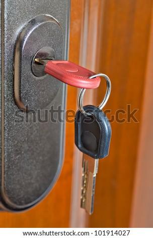 keys in the lock of an entrance door